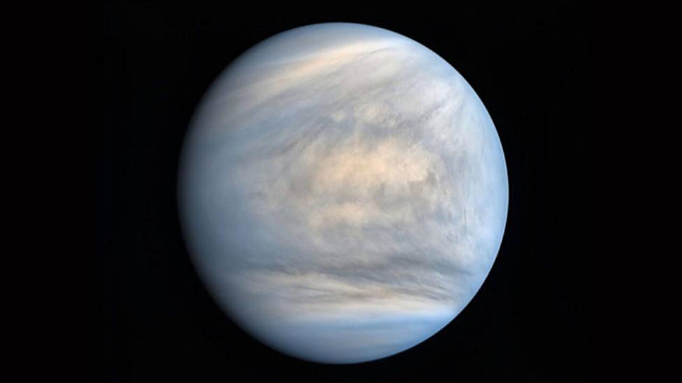 Hallan posibles signos de vida en Venus