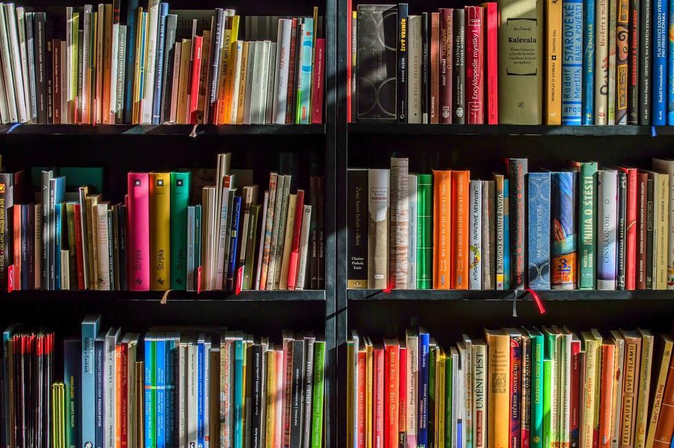Libros infantiles y juveniles en estanterías de bibliotecas