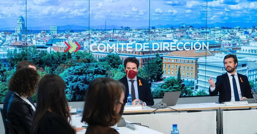 Casado subrayará mañana ante su Ejecutiva que el PP es la única alternativa a Sánchez tras el 14F