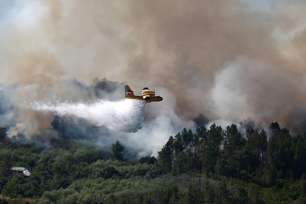 Incendio forestal en la zona de Canibelos, en Orense