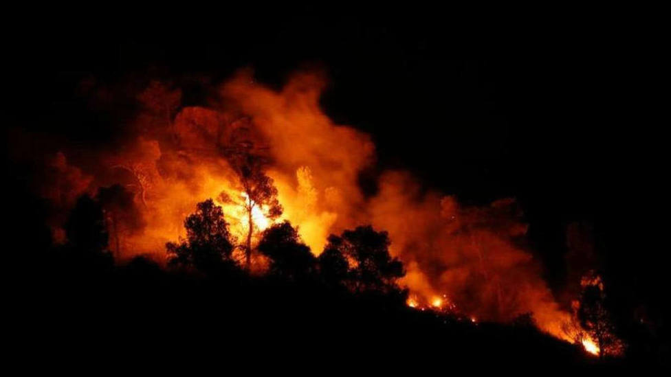España sufre casi la mitad de incendios que en 2019