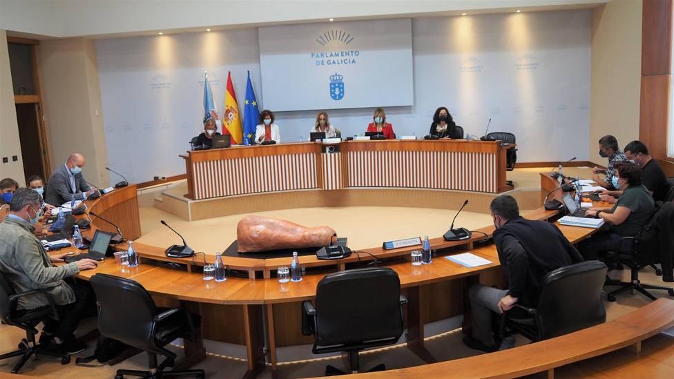 Participantes este jueves en la Comisión de Industria, Energía, Comercio y Turismo