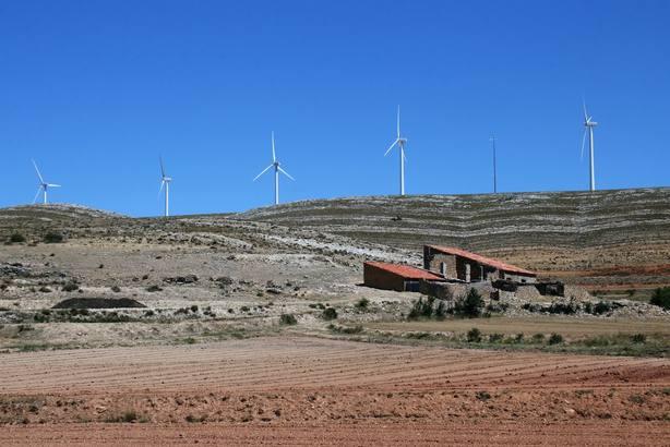 Reforesta destaca el potencial del suelo como gigantesca reserva de carbono y pide favorecer su buena gestión