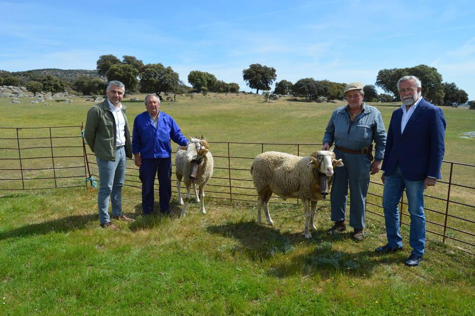 El alcalde visita a los carneros de Mondas