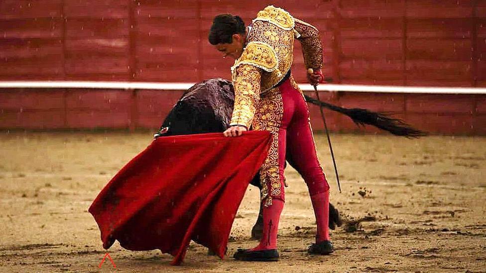 Natural de Borja Collado al único novillo que se ha podido lidiar en Navas del Rey