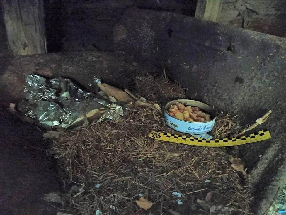 Cebos envenenados colocados en Samos