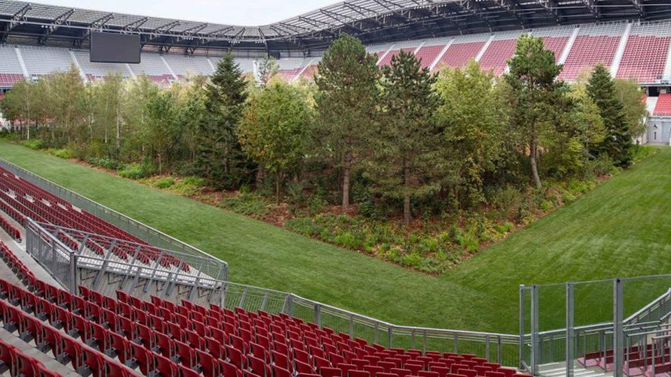 Aparece un inquietante bosque dentro de un estadio de fútbol en Austria