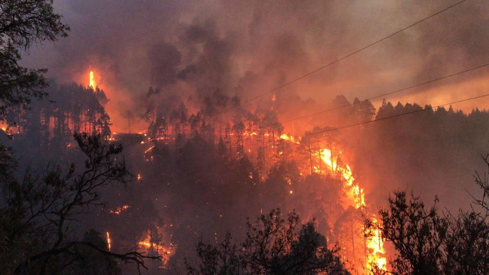 Un gran incendio en Palma obliga a cortar carreteras y a desalojar a vecinos de sus casas
