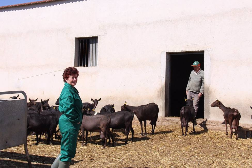 mujer medio rural