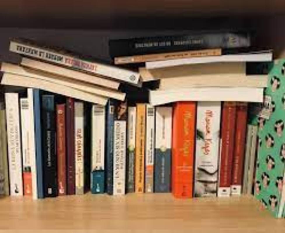 ctv-tm7-foto-libros