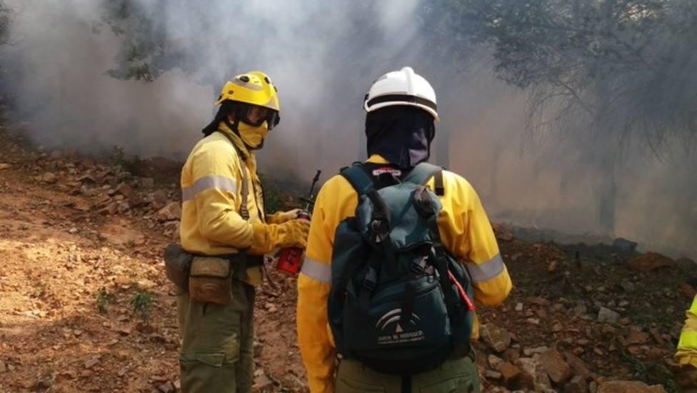 El Infoca da por estabilizado el incendio de Marbella (Málaga)