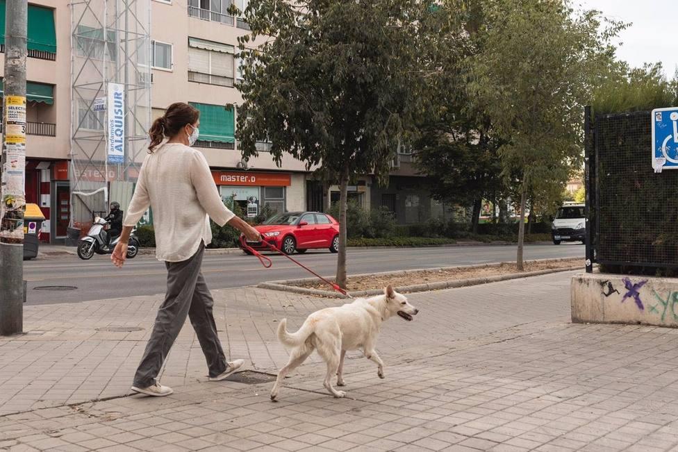 Granada.-Coronavirus.-Vivir con perro y la entrega a domicilio, factores de riesgo en el confinamiento según un estudio