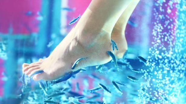Una pedicura de peces provoca que una mujer pierda los dedos de un pie