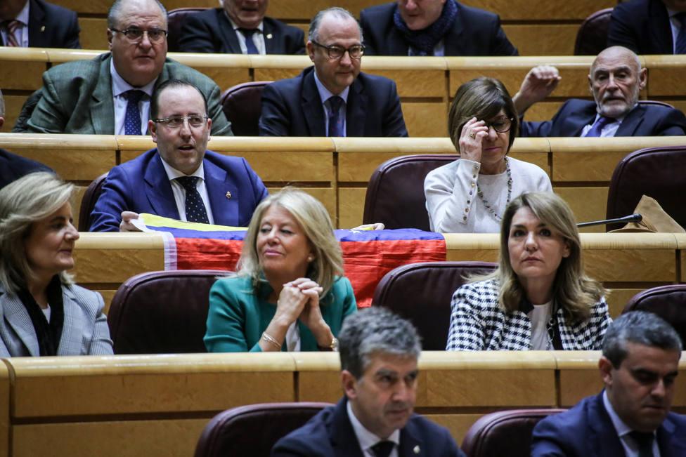Cosidó insiste en que la mayoría del PP en el Senado es fundamental para preservar la unidad de España