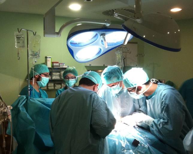 Descubren una posible diana para el desarrollo de terapias que eviten el rechazo a un órgano trasplantado