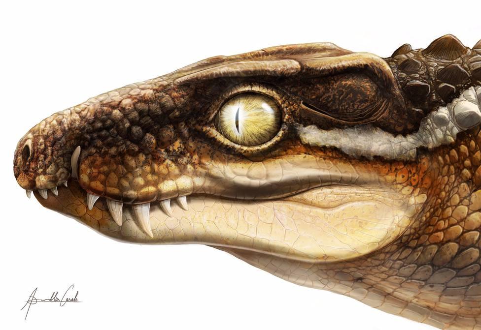 Recreación artística del aspecto que podría haber tenido el Ogresuchus furatus.