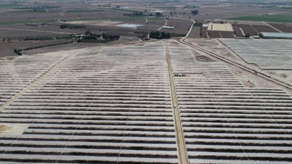 ANSE presenta alegaciones contra la planta solar de Zarcilla de Ramos por su impacto ambiental