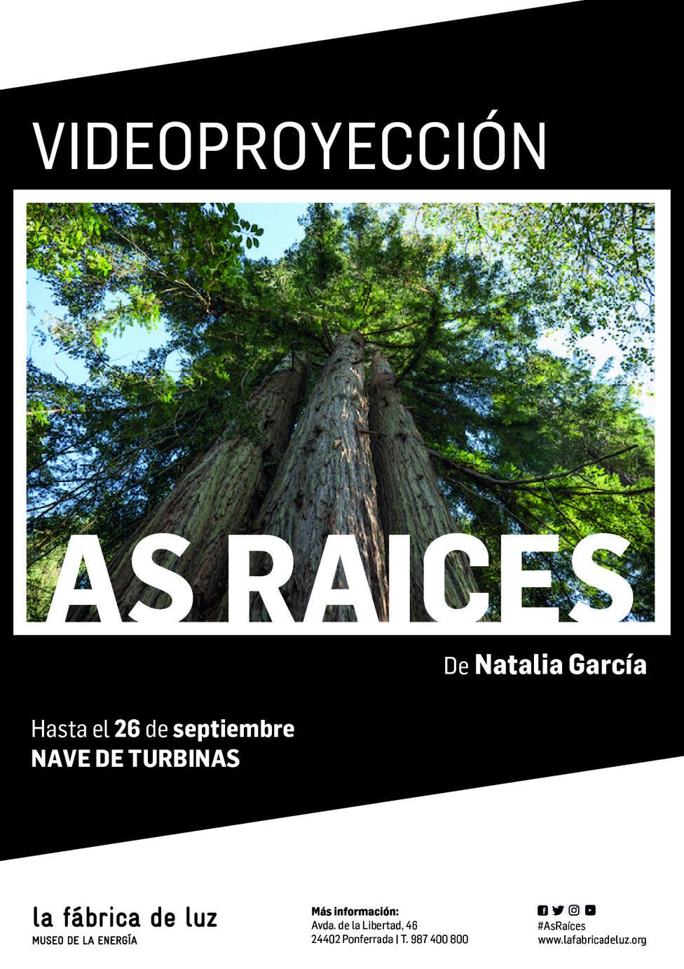 ctv-ttg-cartel videoproyeccin asraices