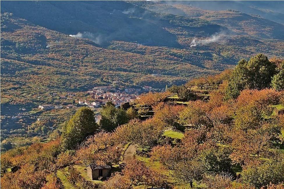 Turismo.- La Vera y el Valle del Jerte recibirán 4 millones de euros para un Plan de Sostenibilidad Turística en Destino