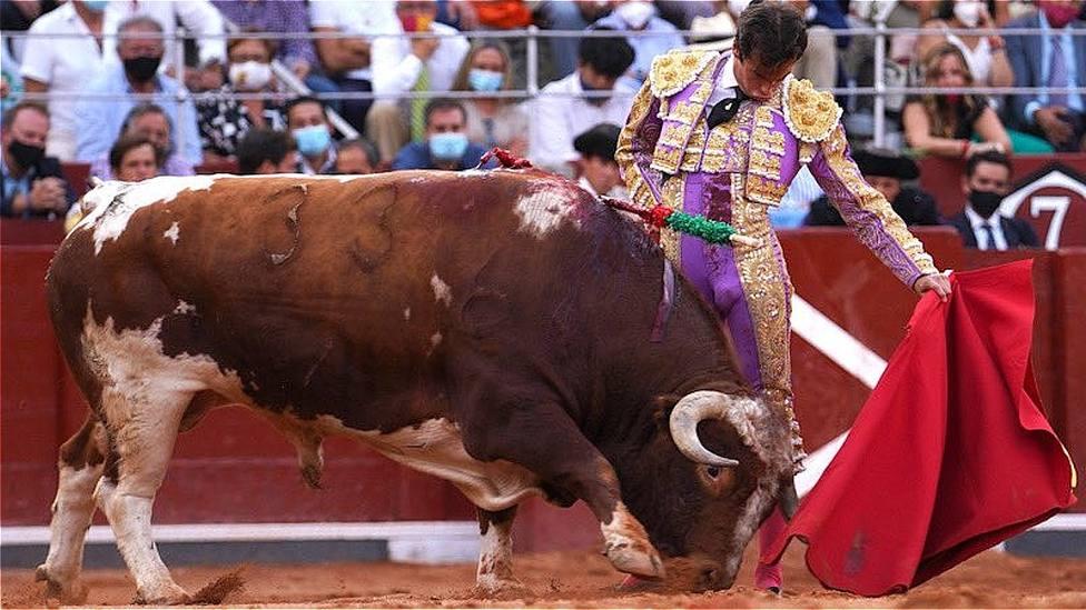 Natural de Alejandro Marcos al sexto toro de Galache en La Glorieta