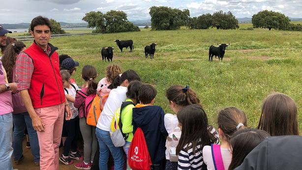Miguel Ángel Perera acompañando a los alumnos del CEIP Las Vaguadas de Badajoz