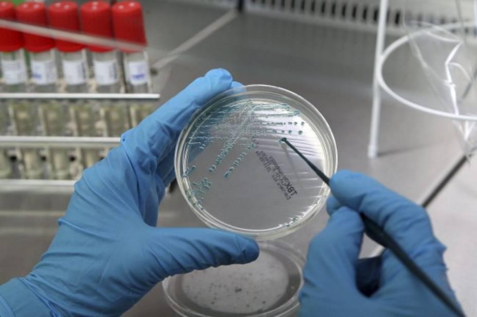 Un Arca de Noé de microbios para salvar a la humanidad