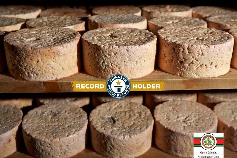 Foto queso Cabrales de récord Guinness