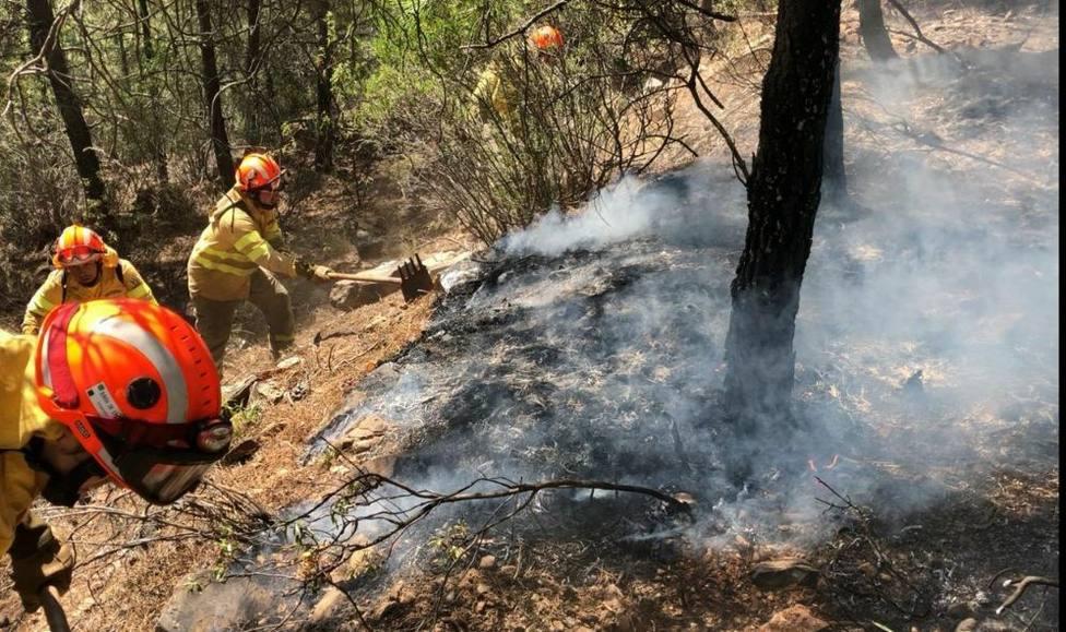 23 incendios forestales arrasan 700 hectáreas en Extremadura durante la pasada semana