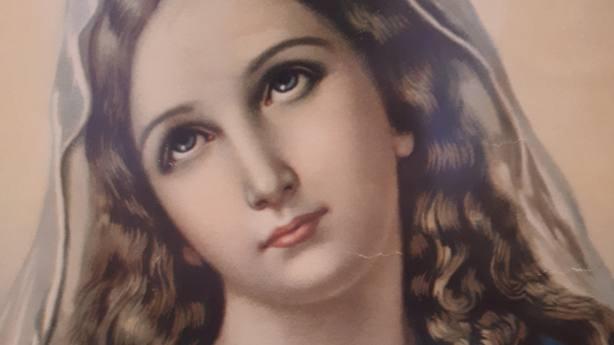 La Inmaculada Concepción: ¡Gracias por tu sí, Madre!