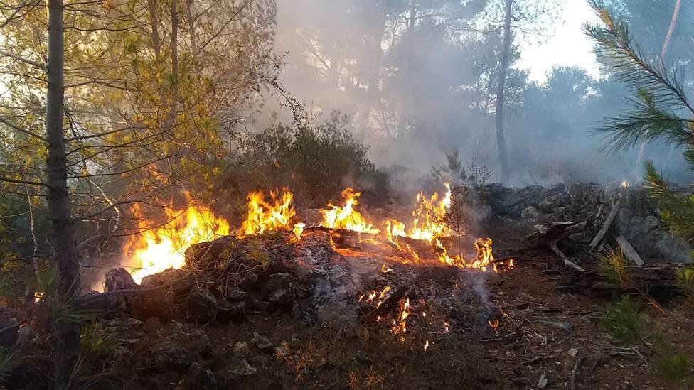 Dos medios aéreos y más de 20 personas actúan en las labores de extinción de un incendio en Palma