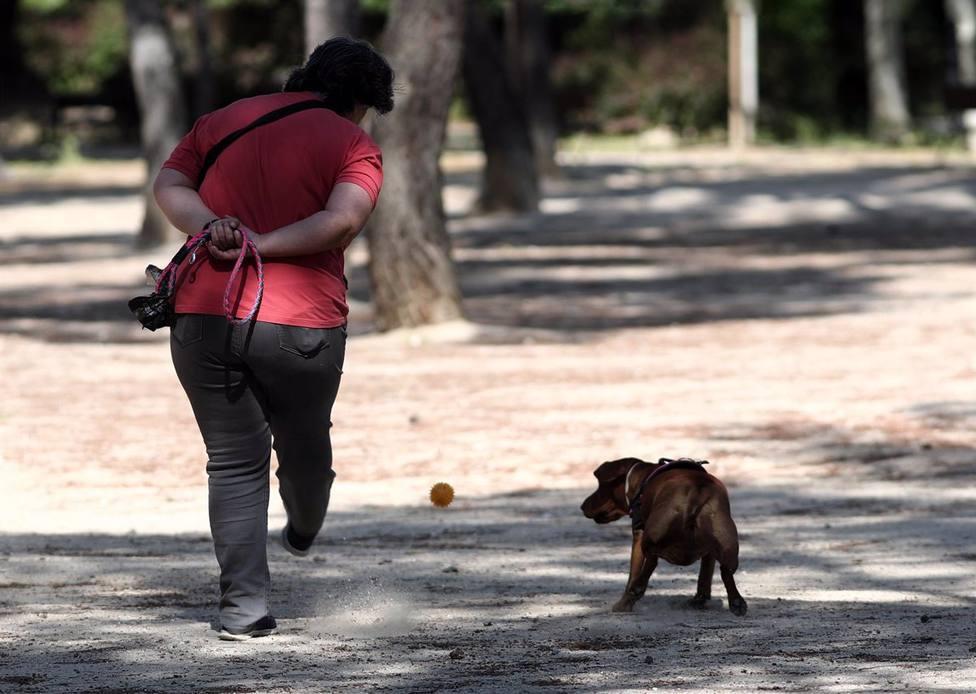 Sant Llorenç de Morunys alerta de un posible envenenamiento masivo de animales de compañía