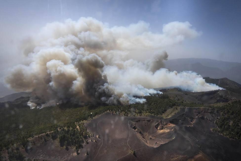 El Gobierno invertirá un millón de euros en restaurar la zona quemada en agosto en Gran Canaria