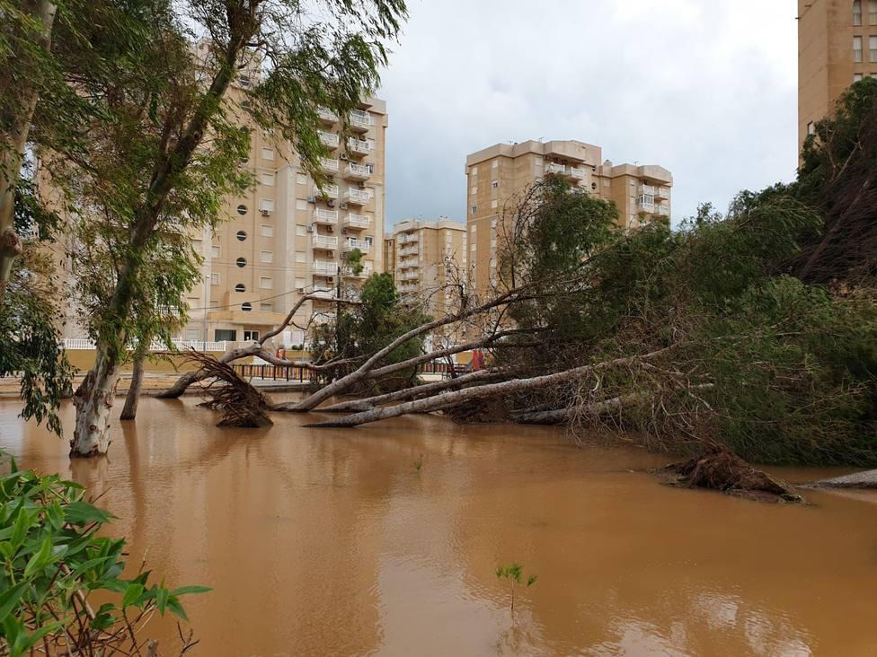 El temporal deja numerosos daños en el litoral cartagenero