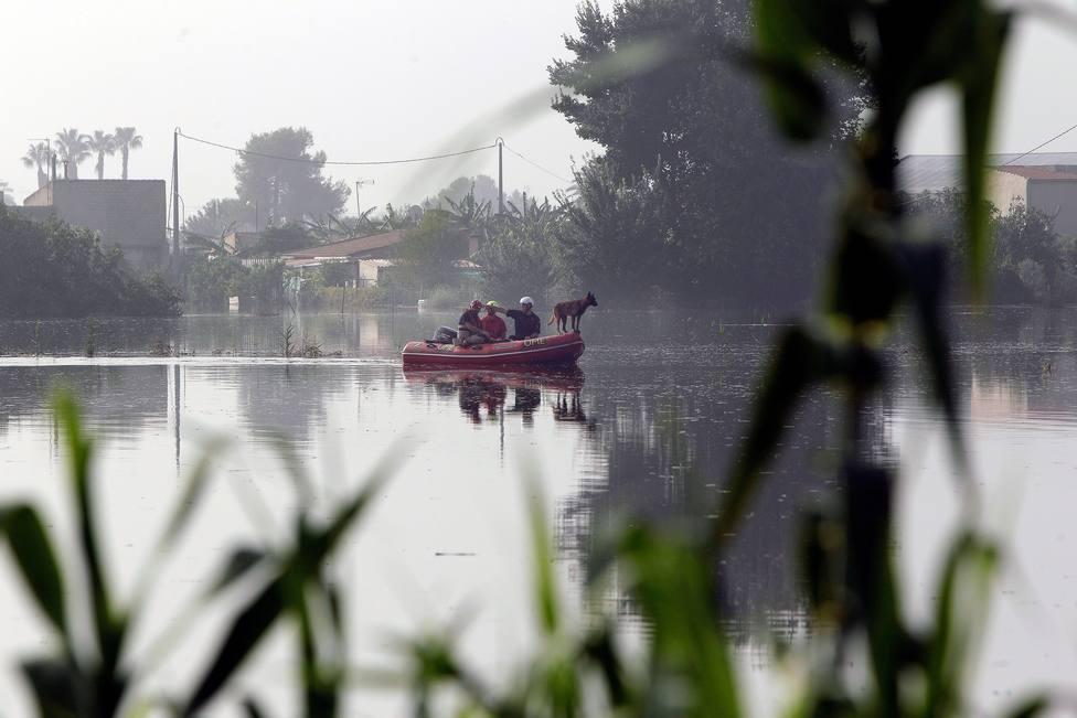Localizan un cadáver en la Vega Baja de Alicante donde se busca al holandés desaparecido