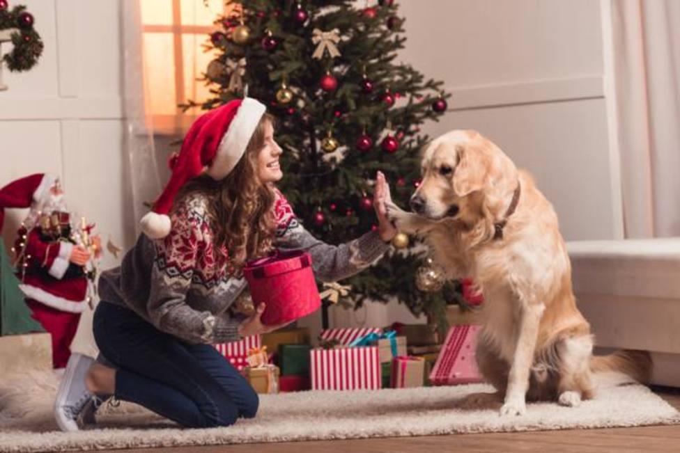 ¡Guau, qué regalos!