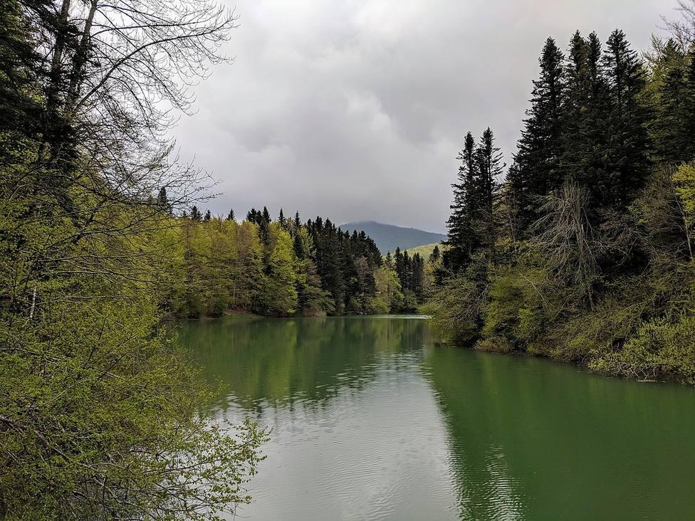 La Selva de Irati (Navarra)