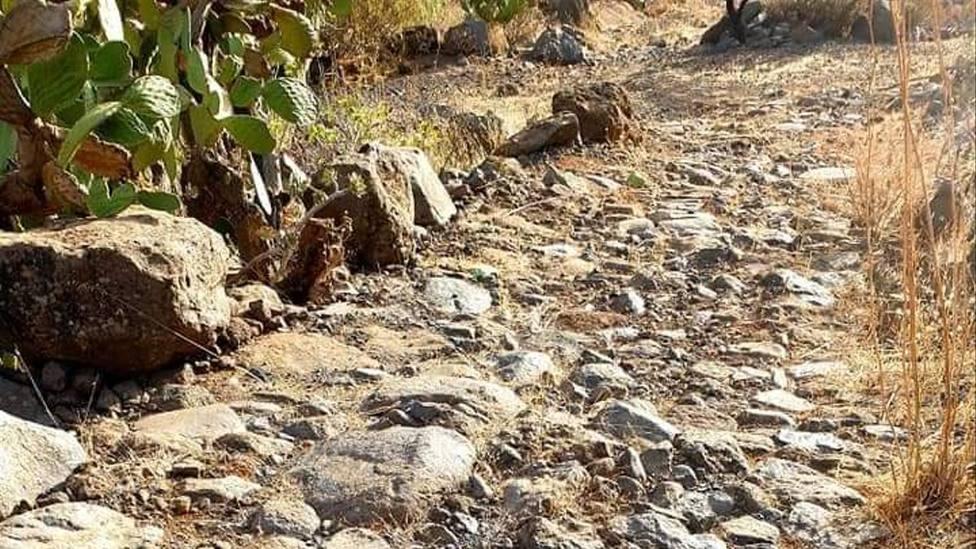 Tramo restaurado del Camino de Las Bestias en el Barranco de Guayadeque