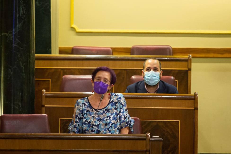 González Laso en su primera intervención en el Congreso - FOTO: Congreso