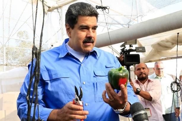 Una empresa fantasma de Sabadell logra beneficios millonarios enviando comida a Venezuela