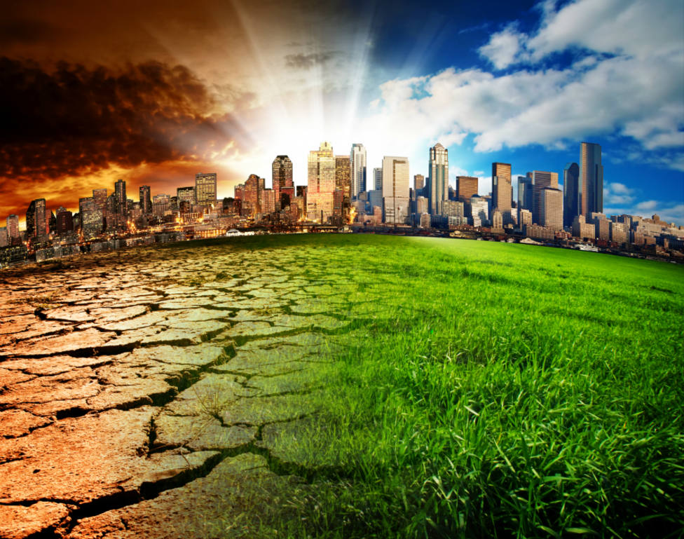 La ONU advierte de que hay que cambiar la dieta para parar el cambio climático