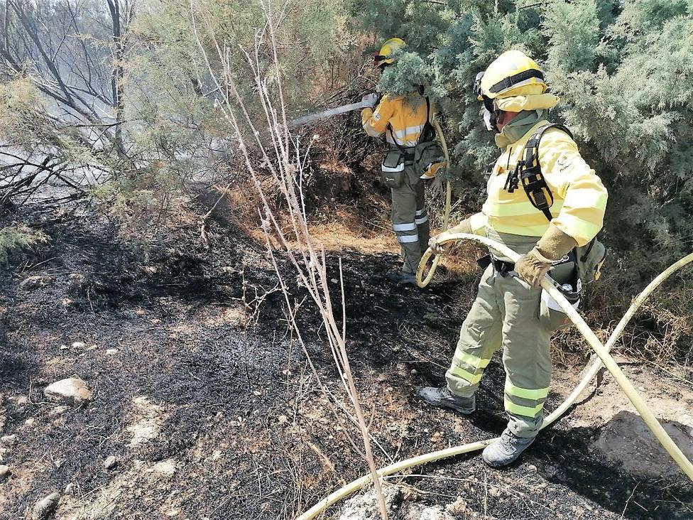 Efectivos del Infomur controlan un incendio en la ribera del río Guadalentín, en La Hoya.