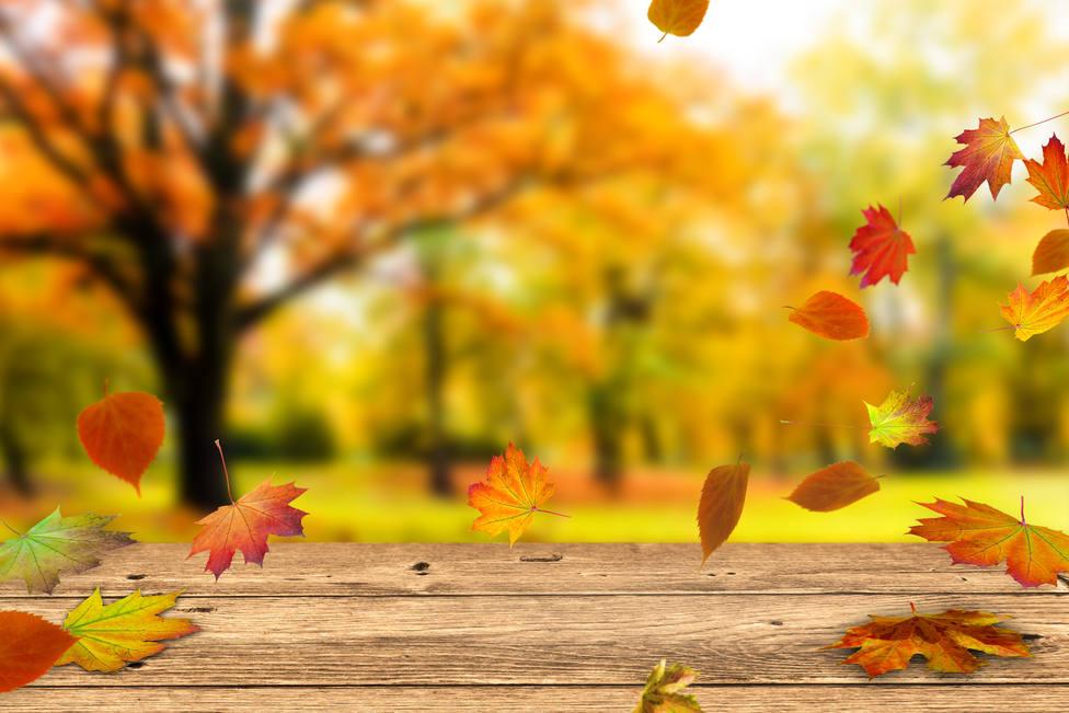 ¿Cómo será el tiempo en noviembre?