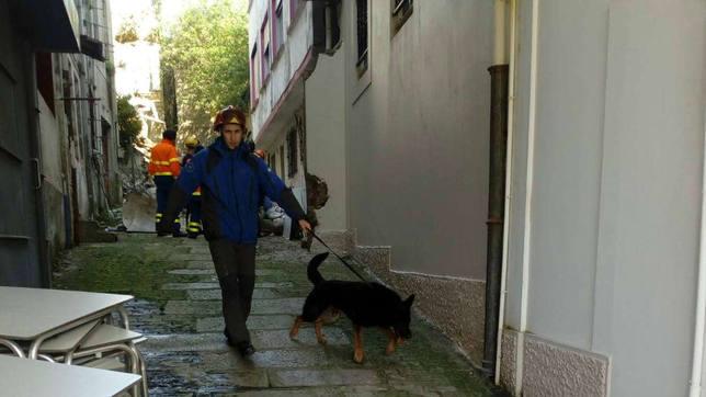 Integrante de Casaga con uno de los perros de rescate