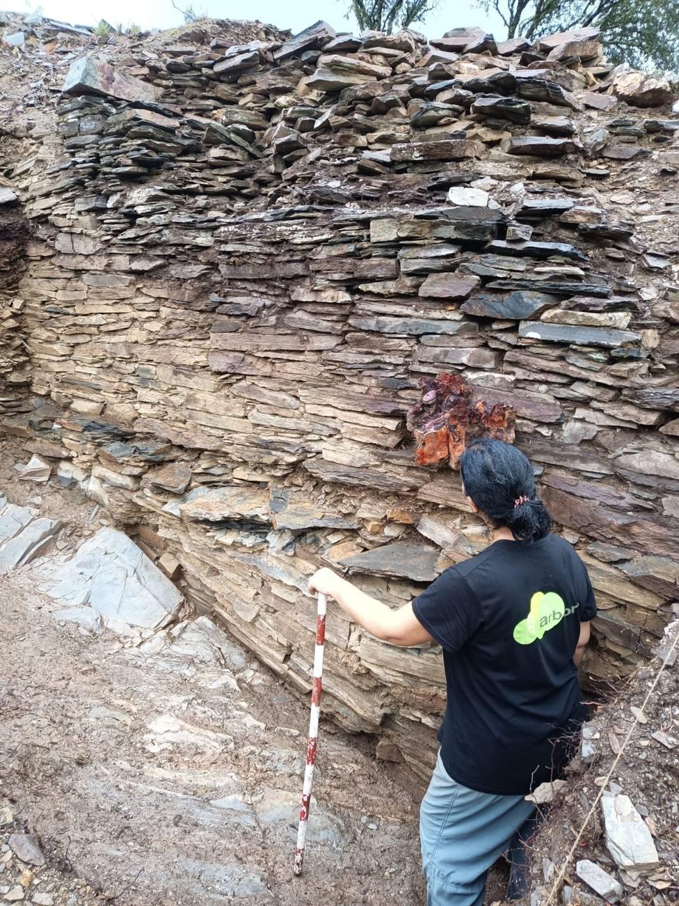 Parte de la muralla encontrada en el yacimiento de A Pobra do Brollón