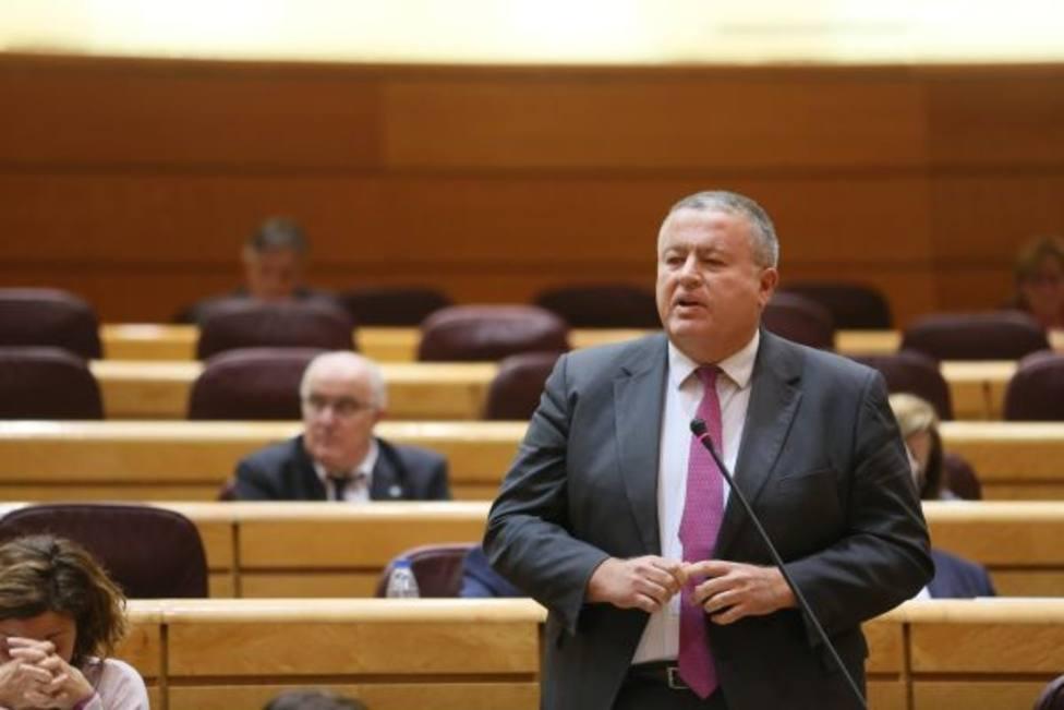 Francisco Bernabé, senador del Partido Popular