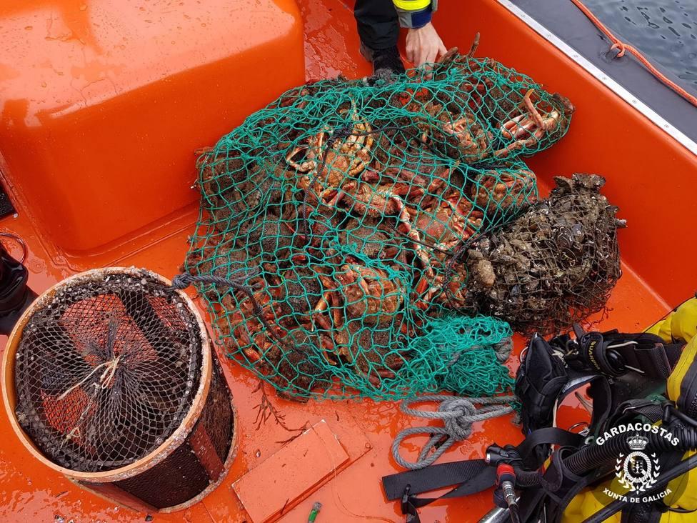 operacion pesca ilegal
