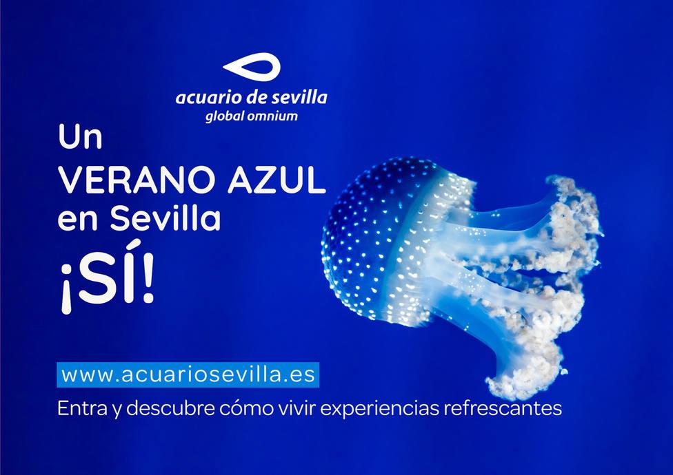 ctv-for-a4-horizontal cartel-verano-azul