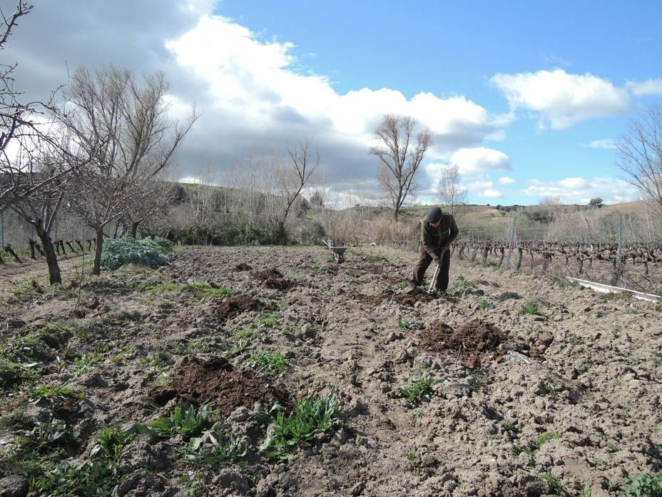 Agricultores y ganaderos podrán pedir las ayudas directas de la PAC del 1 de febrero al 30 de abril de 2019