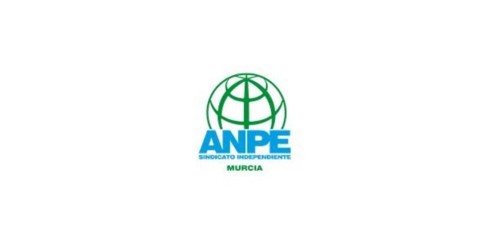 ANPE Murcia considera vergonzosa que Educación estudie abrir centros los festivos
