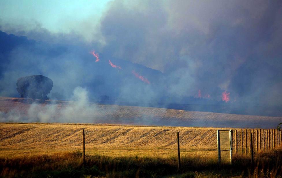 Incendio forestal en Villarroya, La Rioja